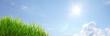 Sommer Banner