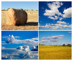 Collage of photos of meadow and sky in summer