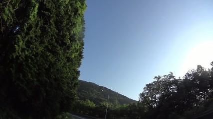 【道-素材】坂道・峠道 ヘアピンカーブ【移動撮影】0045