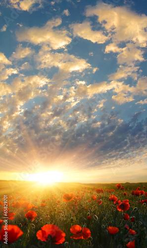 Под небесами