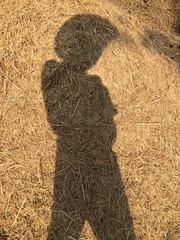 shadow of farmer.