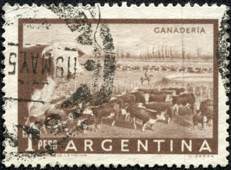 stamp printed in Argentina shows beef cattle