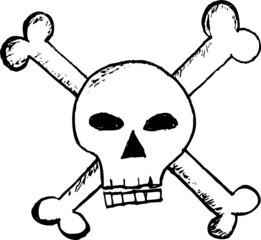 hand draw sketch, skull