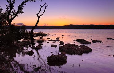 Tidal shallows at sundown landscape