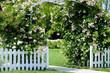 canvas print picture - Hochzeit
