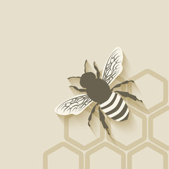 bee honeycomb background