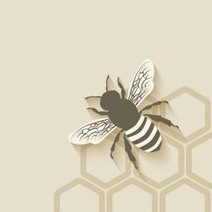 bee honeycomb background