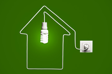 Glowing lightbulb in a house on a green background