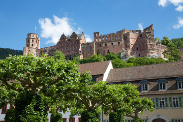 Schloss Heidelberg im Sommer