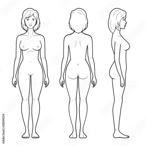 Illustration of female figure - 65844534