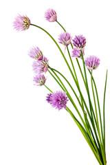 Shallot flowers