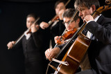 String orchestra performance