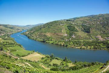 Le Douro dans la région de Porto