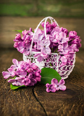 lilac in openwork metal basket