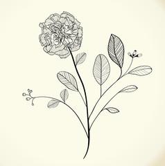 Drawing floral vector background design, EPS 10