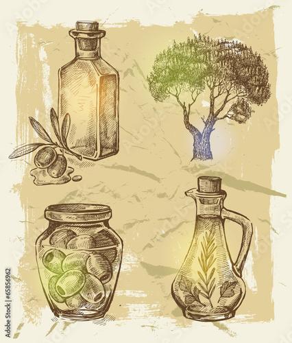 hand-gezeichnete-olive
