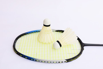 The Shuttlecock and Racket badminton