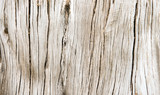 Wooden texture - 65859547
