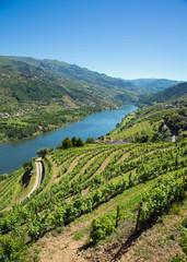 Le Douro (fleuve) dans la région de Porto au Portugal