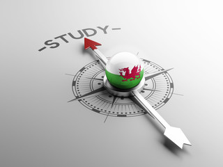 Wales Study Concept