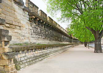 Walls of Avignon