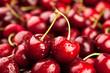 cherry - 65867905