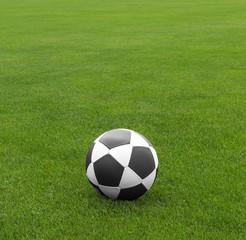 Fußball auf gepflegtem Spielrasen