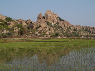 Beautiful granite mountain and rice field