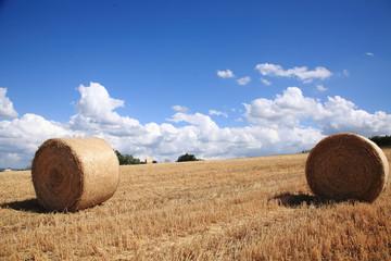 rotoballe balle di paglia paesaggio di campagna