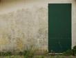 Muro con pianta rampicante e porto