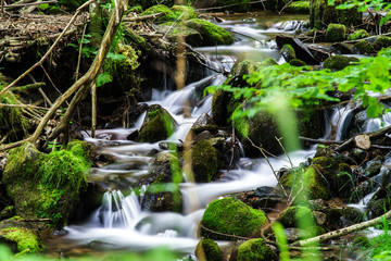 Beautiful small waterfall in Alsace forest