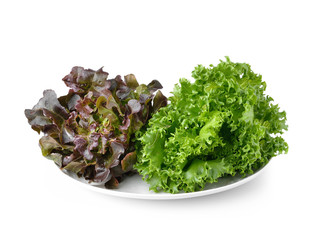 lettuce on the white plate isolated on white background