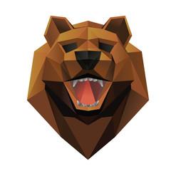 Bear head front