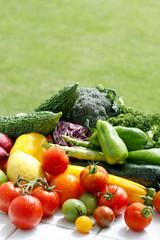 芝生をバックに撮影した夏野菜