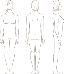 Vector illustration of female figure. Front, back, side views