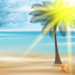 Untouched tropical beach.