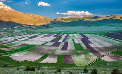 Piano Grande scenic fields and Sibillini mountains in Umbria, It