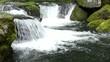 菊池渓谷の渓流と苔むした岩