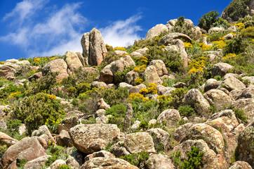 Sardegna, wild landscape of Gerrei area