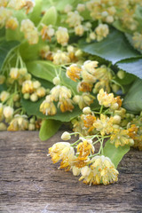 The flowers of linden tea on the rustic table