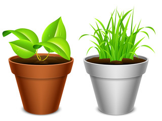 Two plants in brown and white pots.