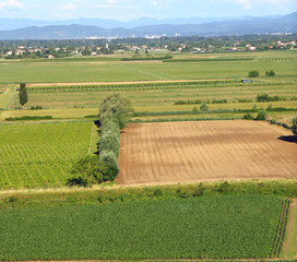 aerial View from the top of the plain with the cultivated fields