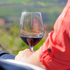 Maine et Loire > Anjou > Vin