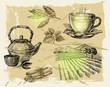 hand drawn tea