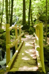 Black Forest Wooden Bridge