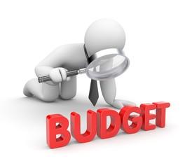 Budget metaphor