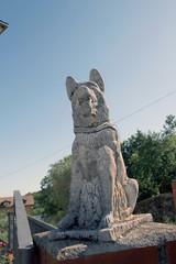 Perro de adorno, Peñacaballera, Salamanca, España
