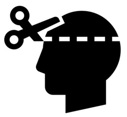 Brain cut icon