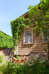 Old wooden house with green plants over blue sky