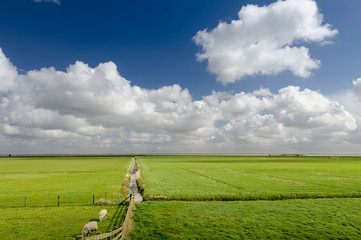 Stunning view of clouds and floodplains in Friesland